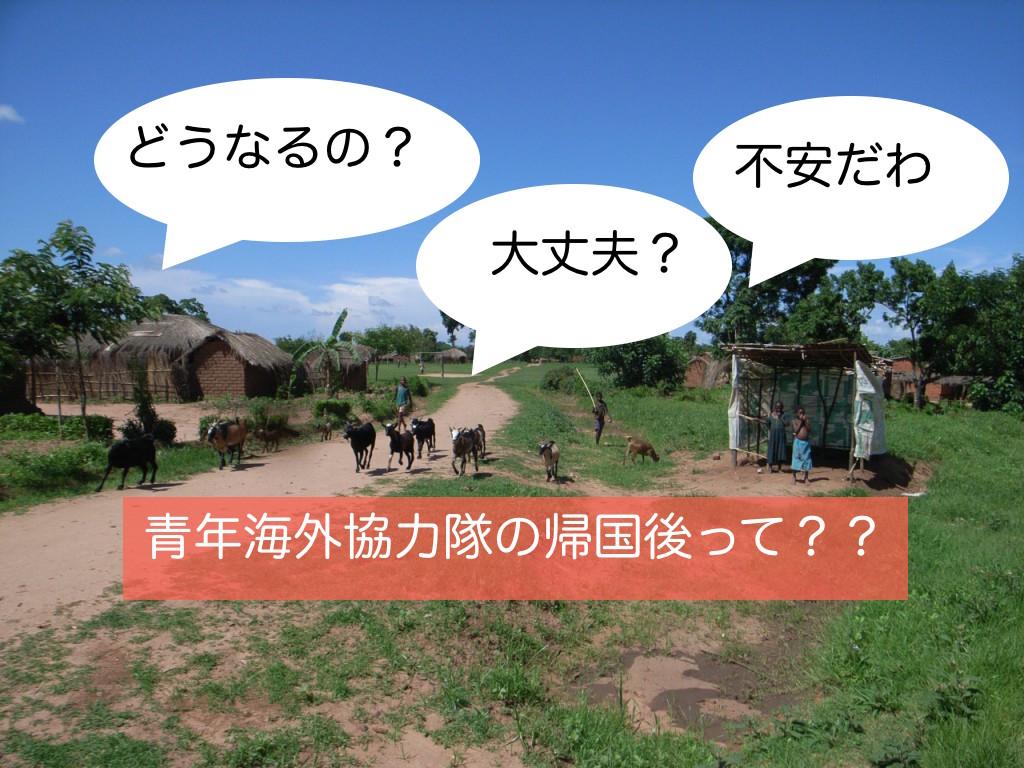 青年海外協力隊ブログ 帰国後ってどんな感じ? 体験談を語ります