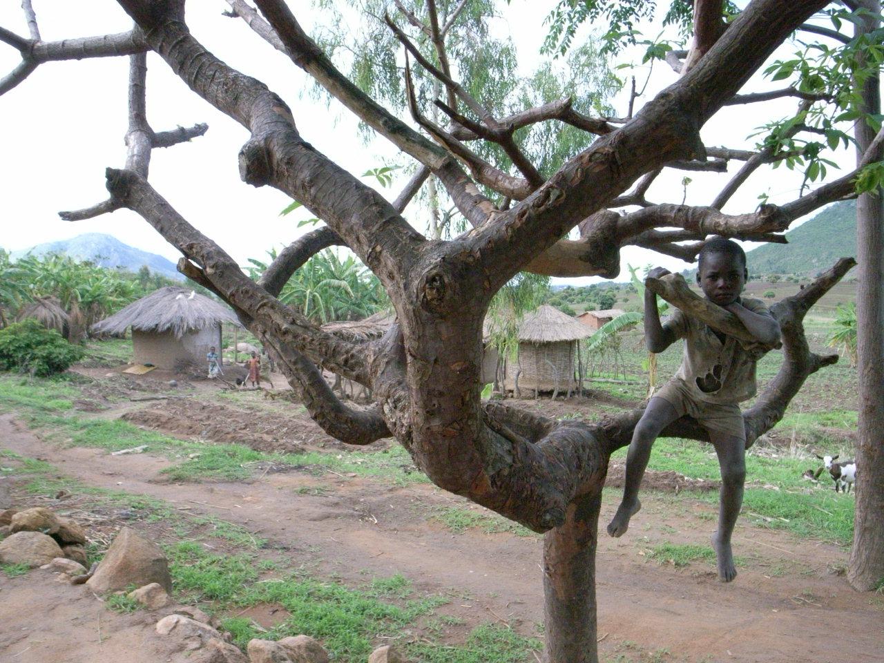 アフリカの生活