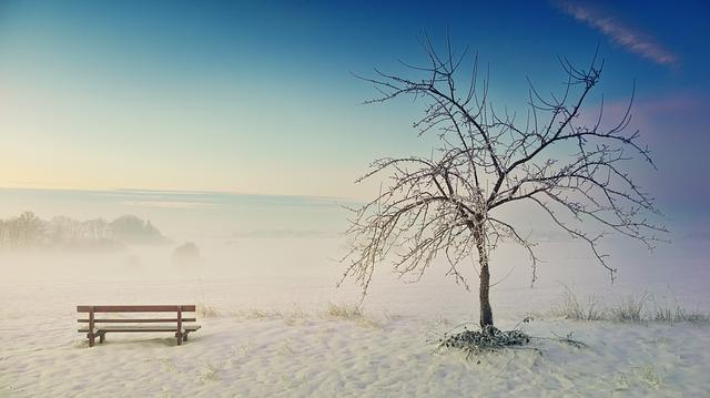 winter-3155181_640